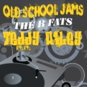 The B Fats: Old School Jams