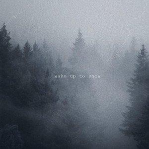 Wake Up to Snow