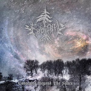 Concealed Beyond The Space