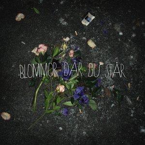 Blommor där du står