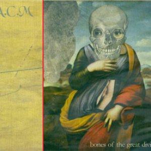 Bones of the Great Divide