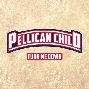Turn Me Down - Single