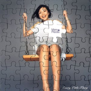 Many Pieces