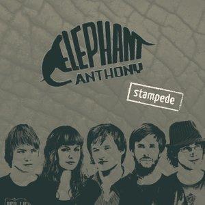 Avatar de Elephant Anthony