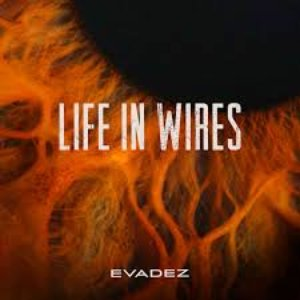 Life in Wires