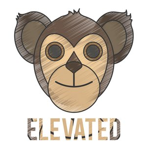 Elevated - Single