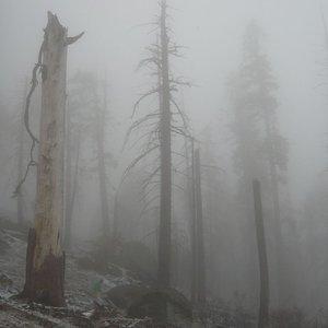 Mount Eerie pts. 6 & 7