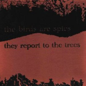 the birds are spies, they report to the trees