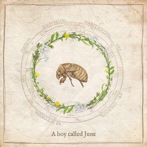 A Boy Called June