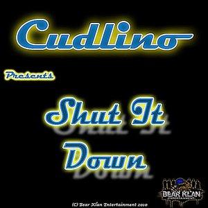 Shut It Down - Single