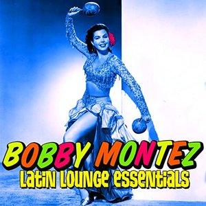 Latin Lounge Essentials