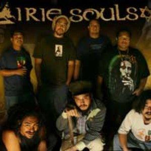 Avatar for Irie Souls