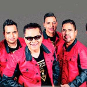 Avatar for Grupo Mojado