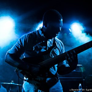 Avatar for Animals as Leaders