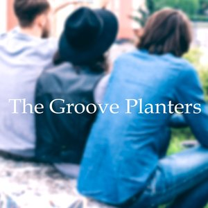 The Groove Planters