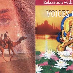 Avatar de Meditation Orchestra
