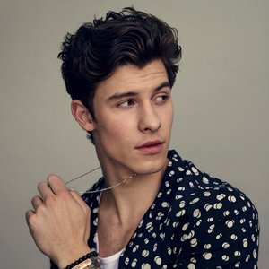 Avatar for Shawn Mendes