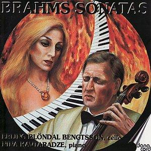 Brahms: Sonatas, Op. 38 & 39