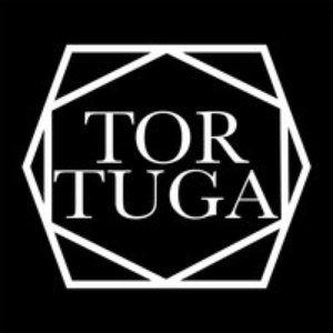 Tortuga, Vol. 1