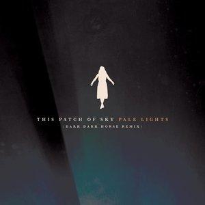 Pale Lights (Dark Dark Horse Remix)