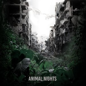 Animal Nights - Single