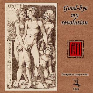 Good-bye my revolution