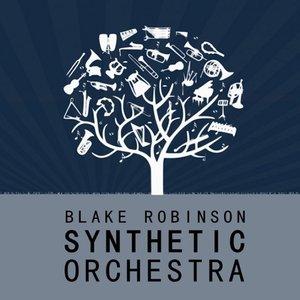 The Blake Robinson Synthetic Orchestra 的头像