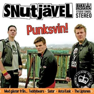 Punksvin