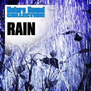 Rain (Nature Sounds)