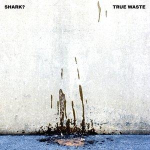 True Waste