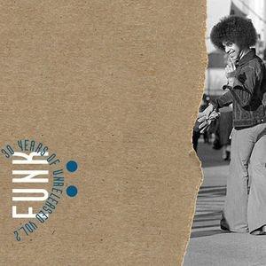 30 Years Of Unreleased Funk Vol.2