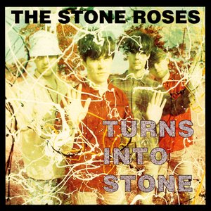 Image for 'Turns Into Stone'