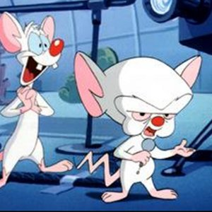 Avatar for PINKY AND THE BRAIN