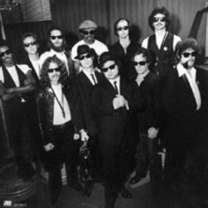 Avatar de The Blues Brothers Band