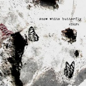 snow white butterfly