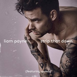 Strip That Down (feat. Quavo) - Single