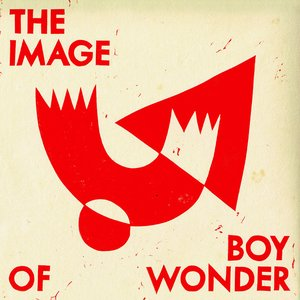 The Image Of Boy Wonder