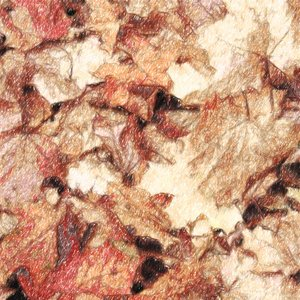 The Autumn Leaves Fall In