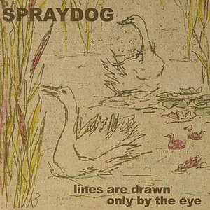 Lines Are Drawn Only By The Eye
