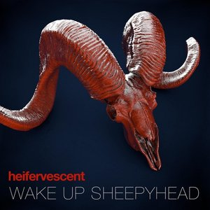 Wake Up Sheepyhead