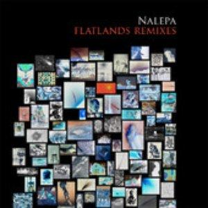 Flatlands (Remixes)