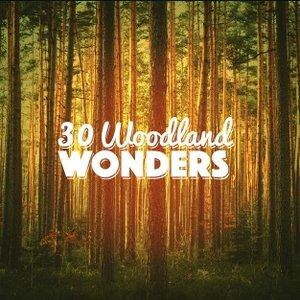 30 Woodland Wonders