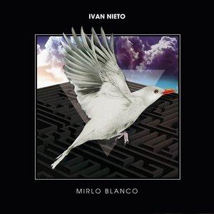 Mirlo Blanco