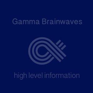 Gamma Brainwaves High Level Information