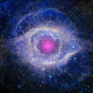 Pupillary Response