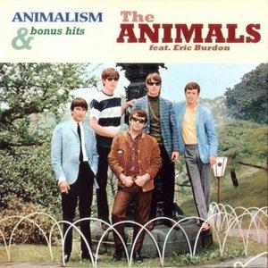 Animalism & Bonus Hits