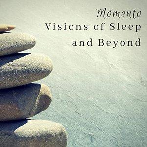 Visions of Sleep and Beyond