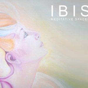 Avatar for Ibis Music