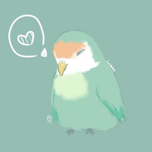 Avatar for luvbird