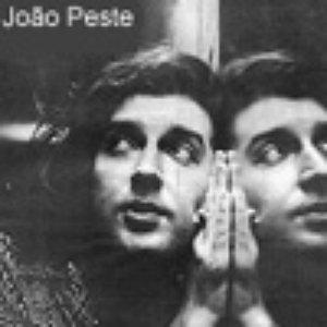 Avatar for João Peste & Acidoxibordel